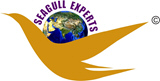 Latest By Seagull Experts®