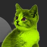 Latest By Greencat